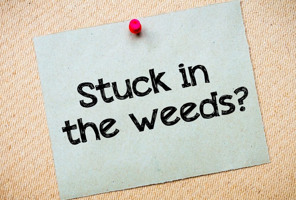 How far in the weeds are you?